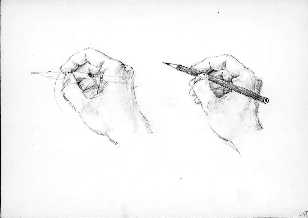 Volna Tvorba Grafika Kresleni Nas Bavi