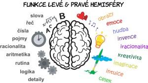 Funkce levé a pravé hemisféry